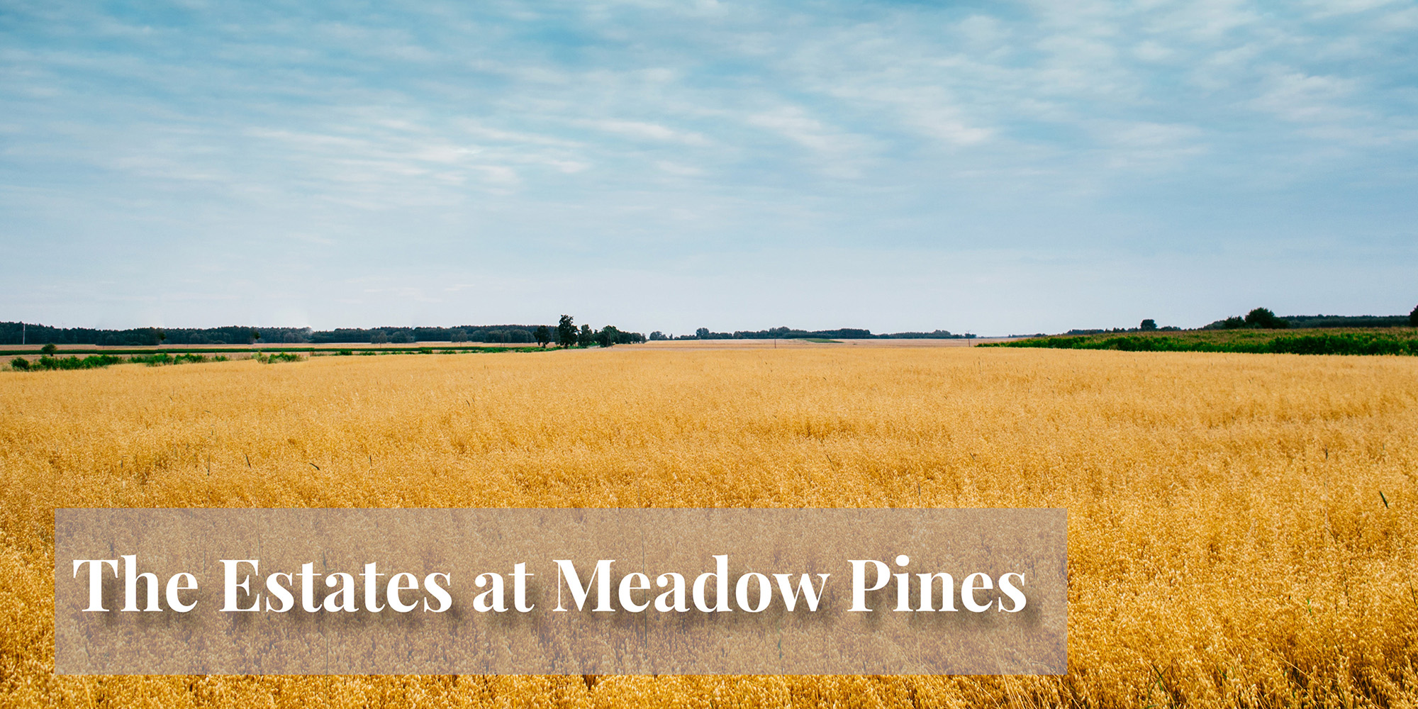 The Estates at Meadow Pines Community by Homes by Deesign